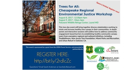 Trees for all flyer 2